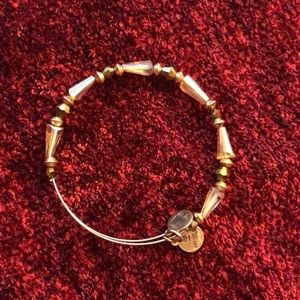 Charm Alex and Ani gold